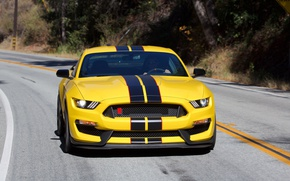 Picture car, Ford, yellow, Ford Shelby, Ford Shelby GT350