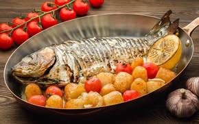 Picture fish, tomatoes, lemon, potatoes