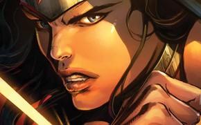 Picture Look, Face, Hero, Comic, Wonder Woman, Superhero, Hero, DC Comics, Blue eyes, Face, Diana, Diana, ...