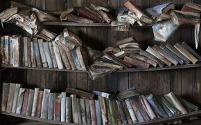 Picture background, books, shelves