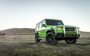 Picture Mercedes, AMG, G63, W463