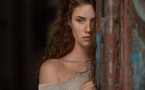 Wallpaper girl, face, background, portrait, freckles, shoulder, freckled, Adam Topowicz