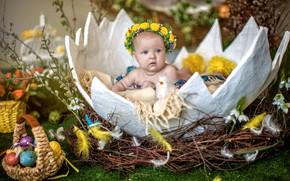 Picture egg, child, Easter, socket, Verba, baby, eggs