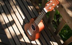 Picture background, guitar, Ukulele