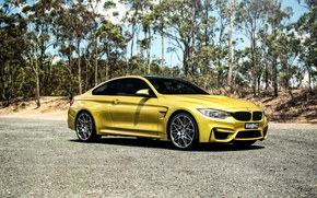 Picture BMW, BMW, side, Coupe, F82