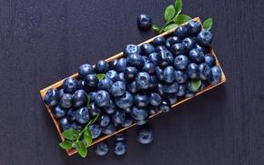 Picture berries, food, blueberries, basket, vitamins, blueberry