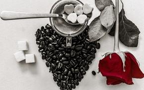 Picture heart, rose, coffee, grain, Cup, sugar, still life, Valentine's Day