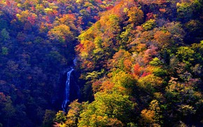 Wallpaper the view from the top, waterfall, trees, Yamagata, Japan, autumn, stream, the sun, Zao Onsen, ...