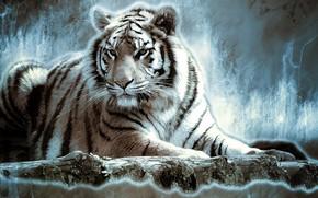 Wallpaper tiger, animal, rendering, figure