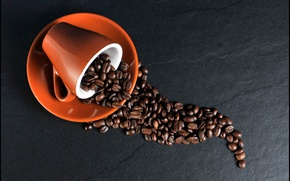 Picture coffee, Cup, coffee beans, saucer, coffee
