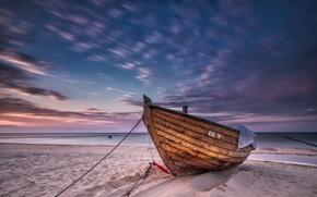 Picture sea, shore, boat