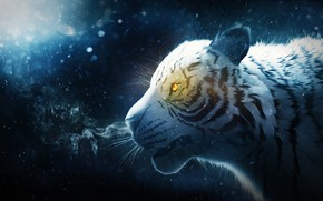 Wallpaper snow, tiger, Valiant Valentine, smoke, by IkyuValiantValentine