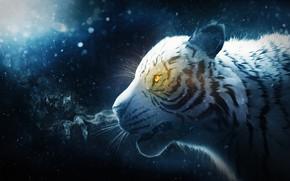 Picture snow, tiger, smoke, by IkyuValiantValentine, Valiant Valentine