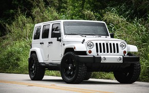 Picture Sahara, with, Wrangler, Jeep, Unlimited, kit, suspension, leveling