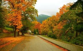 Wallpaper Road, Autumn, Trees, Mountain, Street, Fall, Foliage, Mountain, Autumn, Street, Colors, Leaves
