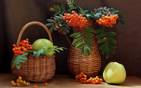 Picture summer, berries, apples, fruit, still life, Rowan