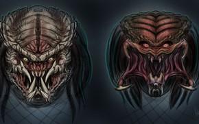 Picture face, predator, fangs, alien, Predator, thing