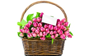 Picture flowers, basket, bouquet, tulips, pink, romantic, tulips, spring, pink tulips