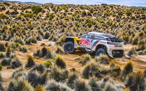 Picture Sand, Sport, Speed, Race, Peugeot, Lights, Red Bull, Rally, Dakar, Dakar, Rally, Sport, DKR, 3008, …