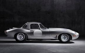 Picture light, grey, background, Jaguar, steel, E-Type Lightweight