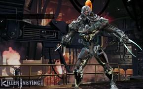 Picture game, robot, mecha, weapon, blade, assassin, martial artist, strong, Killer Instinct