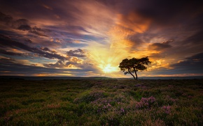 Picture the sky, clouds, dawn, England, morning, North Yorkshire, North Yorkshire Moors