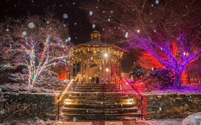 Picture winter, snow, trees, snowflakes, night, lights, Park, holiday, Christmas, lights, ladder, New year, USA, garland, ...
