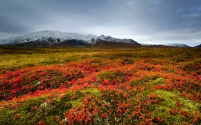 Picture grass, mountains, clouds, valley, meadow, Iceland, Snaefellsnes