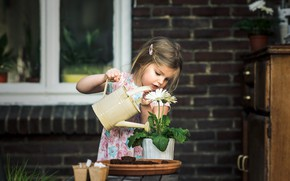 Picture flowers, house, girl