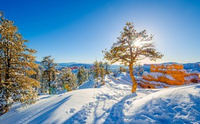 Picture winter, Rocks, Snow