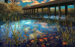 Wallpaper lake, autumn, leaves