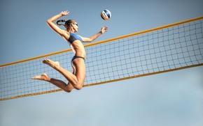 Wallpaper athlete, jump, mesh, volleyball, the ball