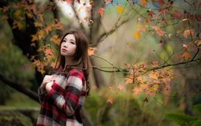 Wallpaper bokeh, girl, Asian, cutie, autumn, leaves