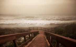 Picture sea, wave, fog, shore, ladder