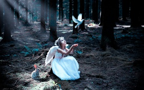 Picture forest, bird, hare, girl