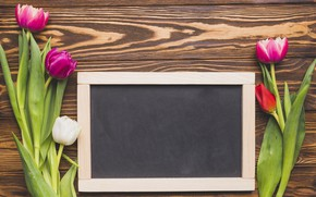 Picture flowers, bright, bouquet, spring, frame, colorful, tulips, Board, fresh, wood, flowers, tulips, spring, bright