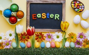 Picture Flowers, Tulips, Easter, Eggs, Holiday