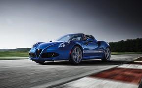 Picture racing track, 2018, Alfa Romeo 4C, Spider Italia