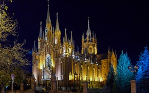 Picture trees, night, lights, street, the fence, ate, Moscow, Cathedral, Russia, Cathedral of the Immaculate Conception