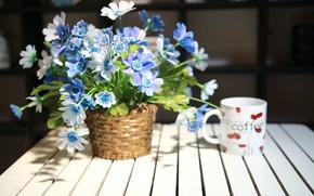 Picture flowers, bouquet, vase, wood