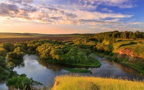 Picture trees, river, panorama