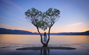 Picture girl, lake, tree, dress, Home, Lichon