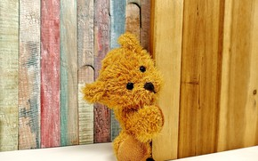 Picture toy, bear, Background