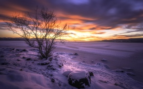 Picture sunset, Buskerud, lake Tyrifjord, Lake Tyrifjorden, Buskerud, Norway, lake, tree, Norway, winter, snow, Lake Tyri