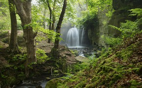 Picture forest, stream, England, haze, Derbyshire, Peak District