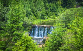 Picture greens, forest, waterfall