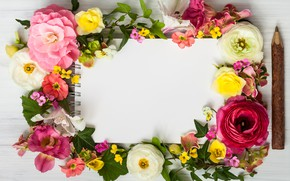 Picture flowers, wood, pink, flowers, beautiful, composition, frame, floral