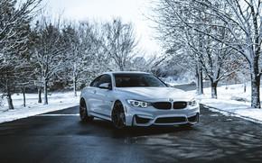 Picture BMW, white, winter