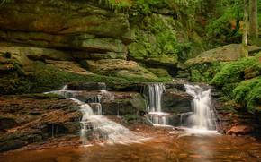 Wallpaper cascade, stones, Baden-Wurttemberg, Valley Manbah, River Manbah, Monbach Valley, The black forest, Black Forest, moss, ...