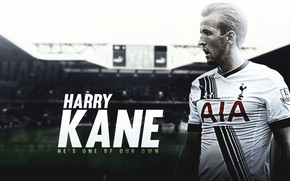 Picture wallpaper, sport, logo, football, player, Tottenham Hotspur, Hurry Kane